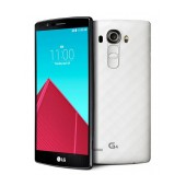 Sample phone (Dummy) for specification reference of model LG G4 H815